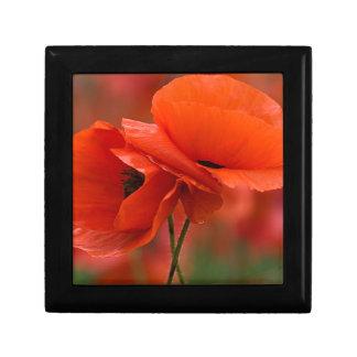 USA, North Carolina. Close-up of poppy Small Square Gift Box
