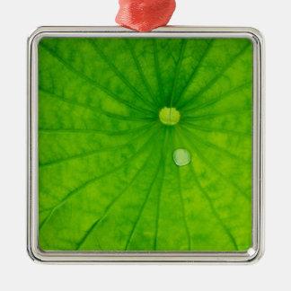 USA; North Carolina; Lotus leaf with dew drop Silver-Colored Square Decoration