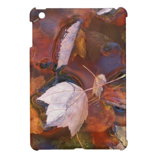 USA, Northeast, Fall leaves in puddle with Cover For The iPad Mini