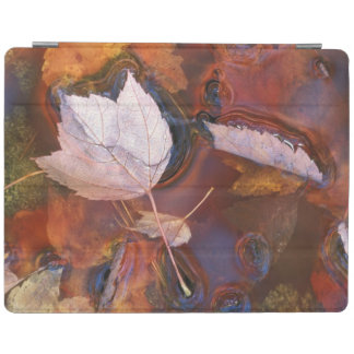 USA, Northeast, Fall leaves in puddle with iPad Cover