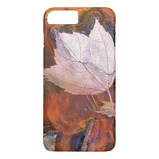 USA, Northeast, Fall leaves in puddle with iPhone 8 Plus/7 Plus Case