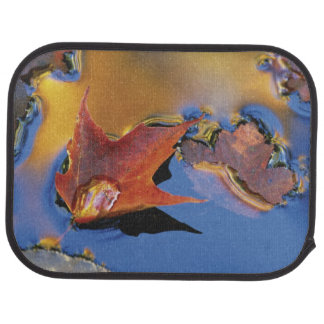 USA, Northeast, Maple Leaf in Reflection Car Mat