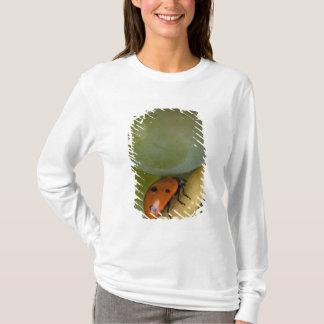 USA, Oregon, Amity. Lady bug on Chardonnay T-Shirt