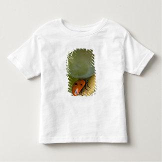 USA, Oregon, Amity. Lady bug on Chardonnay Toddler T-Shirt