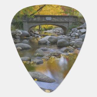 USA, Oregon, Ashland, Lithia Park. Autumn Guitar Pick