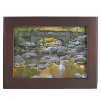 USA, Oregon, Ashland, Lithia Park. Autumn Keepsake Box