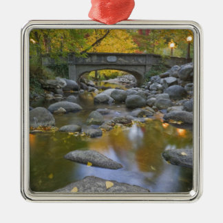 USA, Oregon, Ashland, Lithia Park. Autumn Silver-Colored Square Decoration