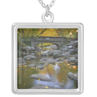 USA, Oregon, Ashland, Lithia Park. Autumn Silver Plated Necklace