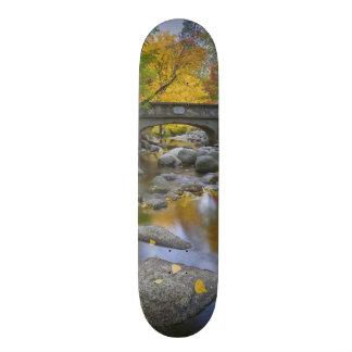 USA, Oregon, Ashland, Lithia Park. Autumn Skateboards