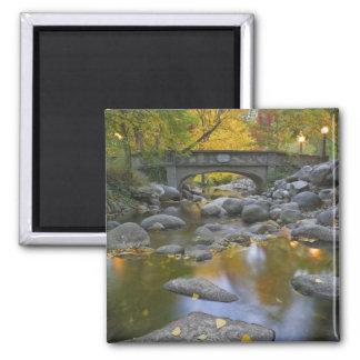 USA, Oregon, Ashland, Lithia Park. Autumn Square Magnet