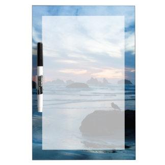 USA, Oregon, Bandon Beach. Seagull on rock Dry Erase Board