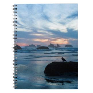 USA, Oregon, Bandon Beach. Seagull on rock Notebook