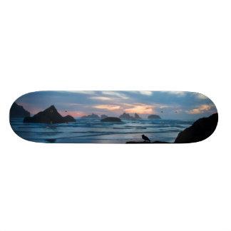 USA, Oregon, Bandon Beach. Seagull on rock Skate Board Decks