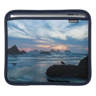 USA, Oregon, Bandon Beach. Seagull on rock Sleeves For iPads