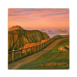 USA, Oregon, Bandon. Rocks Viewed From Trail Wood Coaster