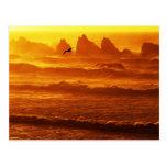USA, Oregon, Bandon. Sunset over waves and sea Postcard