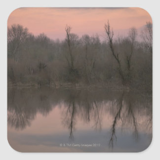 USA, Oregon, Bare trees reflecting in lake at Square Sticker