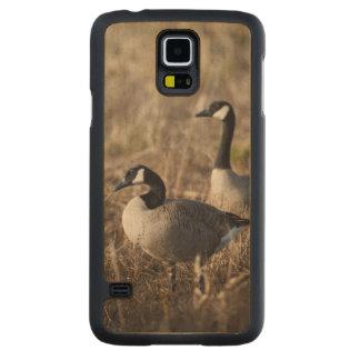 USA, Oregon, Baskett Slough National Wildlife 2 Carved Maple Galaxy S5 Case