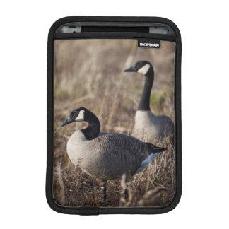 USA, Oregon, Baskett Slough National Wildlife 2 iPad Mini Sleeve