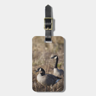 USA, Oregon, Baskett Slough National Wildlife 2 Luggage Tag