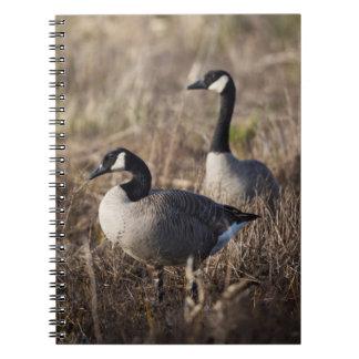 USA, Oregon, Baskett Slough National Wildlife 2 Spiral Notebook