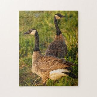 USA, Oregon, Baskett Slough National Wildlife 3 Jigsaw Puzzle