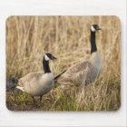 USA, Oregon, Baskett Slough National Wildlife 5 Mouse Mat