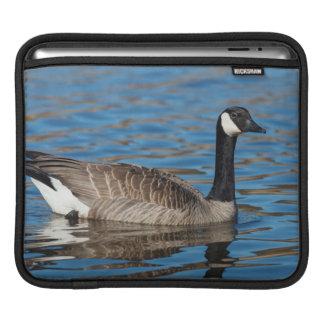 USA, Oregon, Baskett Slough National Wildlife 7 iPad Sleeve