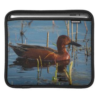 USA, Oregon, Baskett Slough National Wildlife 8 iPad Sleeve
