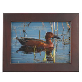 USA, Oregon, Baskett Slough National Wildlife 8 Keepsake Box