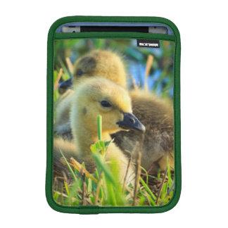 USA, Oregon, Baskett Slough National Wildlife 9 iPad Mini Sleeve