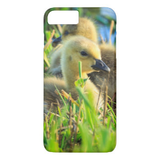 USA, Oregon, Baskett Slough National Wildlife 9 iPhone 8 Plus/7 Plus Case