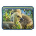 USA, Oregon, Baskett Slough National Wildlife 9 MacBook Sleeve