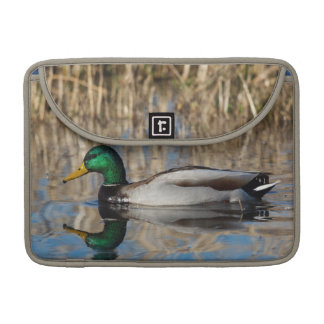 USA, Oregon, Baskett Slough National Wildlife Sleeve For MacBook Pro