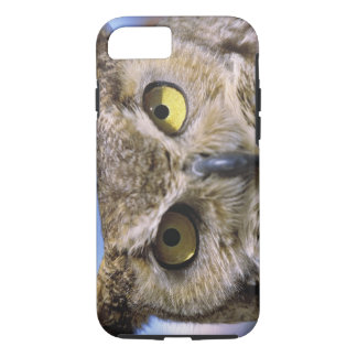 USA, Oregon, Bend. Great Horned Owls are common iPhone 8/7 Case
