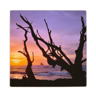 USA, Oregon, Cape Meares. Sunset Wood Coaster