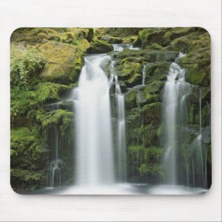 USA, Oregon, Cascade Range, Umpqua National Mouse Mat