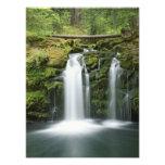 USA, Oregon, Cascade Range, Umpqua National Art Photo