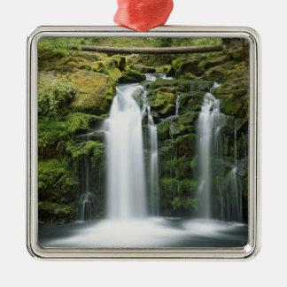 USA, Oregon, Cascade Range, Umpqua National Silver-Colored Square Decoration
