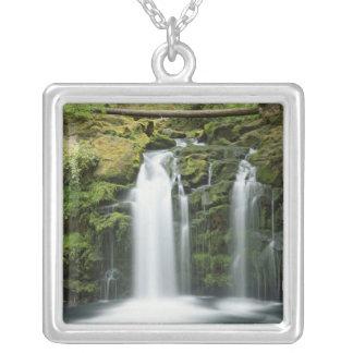 USA, Oregon, Cascade Range, Umpqua National Silver Plated Necklace