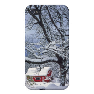 USA, Oregon, Clackamas County. Fresh snow covers iPhone 4/4S Cover