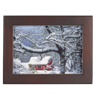 USA, Oregon, Clackamas County. Fresh snow covers Keepsake Box