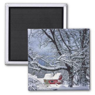 USA, Oregon, Clackamas County. Fresh snow covers Refrigerator Magnets