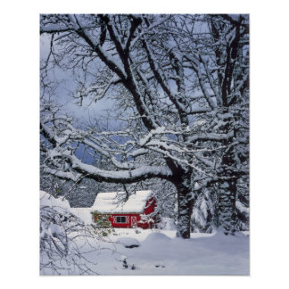USA, Oregon, Clackamas County. Fresh snow covers Poster