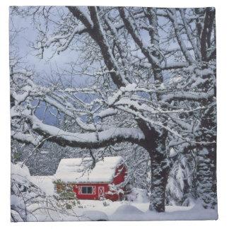 USA, Oregon, Clackamas County. Fresh snow covers Printed Napkin