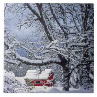 USA, Oregon, Clackamas County. Fresh snow covers Tile
