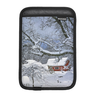 USA, Oregon, Clackamas County. Fresh snow iPad Mini Sleeve