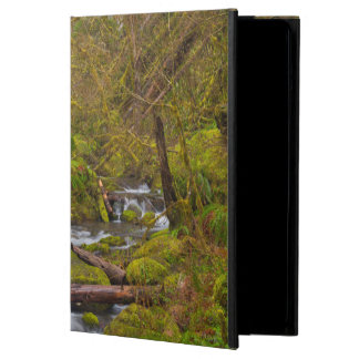 USA, Oregon, Columbia Gorge iPad Air Cover