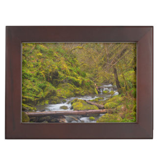 USA, Oregon, Columbia Gorge Keepsake Box