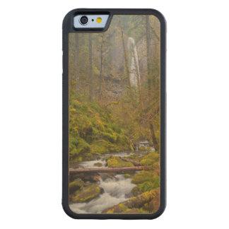 USA, Oregon, Columbia Gorge Maple iPhone 6 Bumper